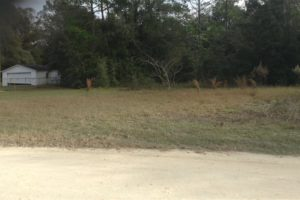 North Ocala. Sold as a land contract for $8770 USD